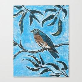 Bird on a branch Canvas Print