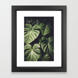Monstera - Tropical Forest - nature photography Framed Art Print