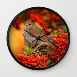 Hermit Thrush on the Scarlet Firethorn Wall Clock