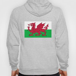 National flag of Wales - Authentic version Hoody