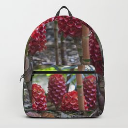 Red Ginger Backpack
