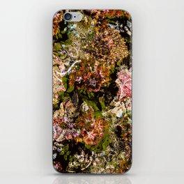 Cashmere Pattern iPhone Skin