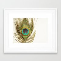 peacock feather Framed Art Prints featuring Peacock Feather by Kimberly Blok