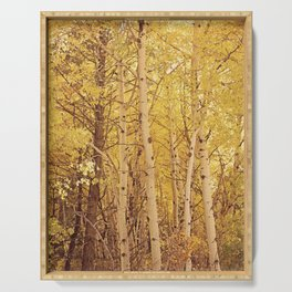 Fall Aspen Trees Serving Tray