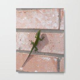 Green Anole Lizard Metal Print