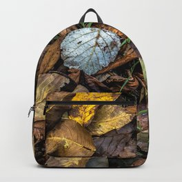 Summer is gone, Autumn is finally here Backpack