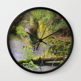 Ha Ha Tonka Spring Wall Clock