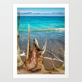 Driftwood Huron Beach Art Print