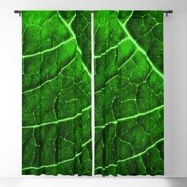 LEAF STRUCTURE GREENERY no2 Blackout Curtain