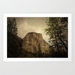 Yosemite - Study 31 Art Print