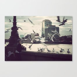 Pigeon Whisper    Canvas Print
