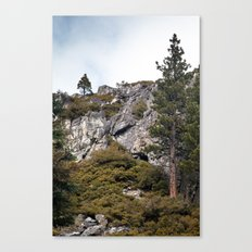 Mountains and Forest, Lake Tahoe Canvas Print