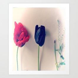 Red Poppy, Black Tulip, Purple Lavender, Flower Collage Art Print