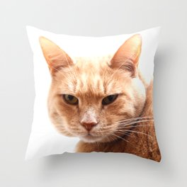 Red cat watching Throw Pillow