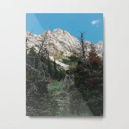 Cascade Canyon, Grand Teton National Park, Wyoming Metal Print