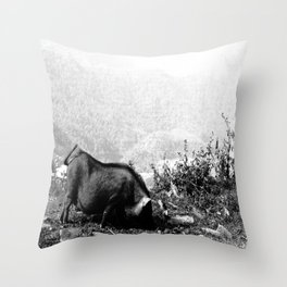 The Wild Boar Throw Pillow