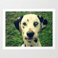 "Dalmatian ""Jac"" Art Print"
