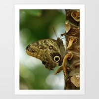 camouflage Art Prints featuring Camouflage by Monica Ortel ❖