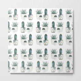 Caci and succulents Metal Print