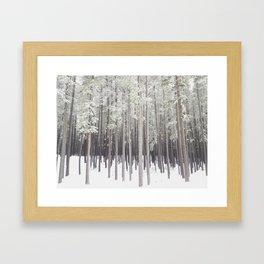 Stick Trees at Cypress Hills Framed Art Print