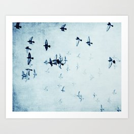 birds II Art Print