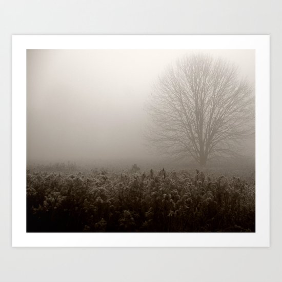 Falls first frost Art Print