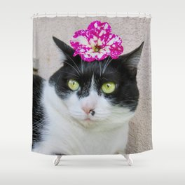 Khoshek sweet kittycat Shower Curtain