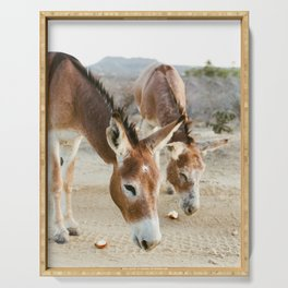 Two Donkeys Eating Apples Serving Tray