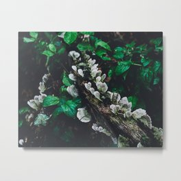 The Woods 2 Metal Print