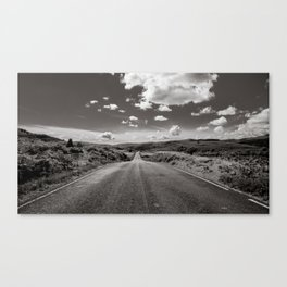 Savoring The Open Road Canvas Print