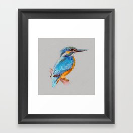 Kingfisher 5 Framed Art Print