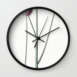 Round-headed leek  from Les liliacees (1805) by Pierre Joseph Redoute (1759-1840) Wall Clock