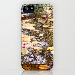 Painted South iPhone Case