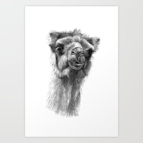 Bactrian Camel SK0103 Art Print