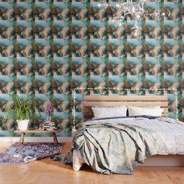 Orchid 2016 Wallpaper