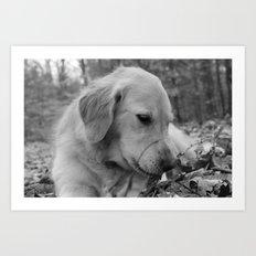 Classic Dog Art Print