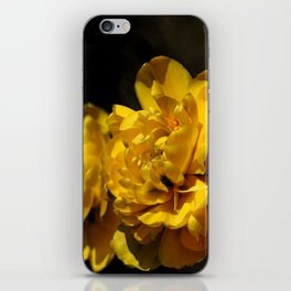 Beautiful Spring iPhone Skin