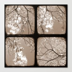 Look Through My Window - Through The Viewfinder (TTV) - Polyptych Canvas Print