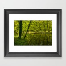Forest lake pure relaxation for the Soul Framed Art Print