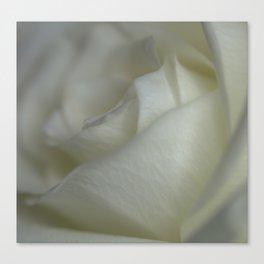 Cream Dream Canvas Print
