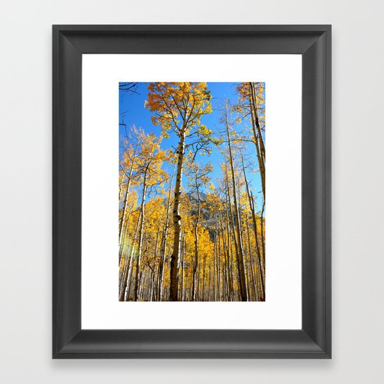 Enchiladas in the Trees 2 Framed Art Print