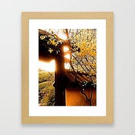 jingshénfenlièzhèng Framed Art Print