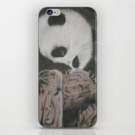 Xiao Liu iPhone Skin