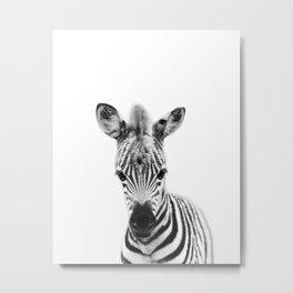 Baby Zebra Black & White, Baby Animals Art Print by Synplus Metal Print