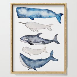 Watercolor orca whale, spermwhale, humpback, narwhal, beluga whales Serving Tray