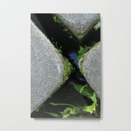 Stepping Stones Metal Print