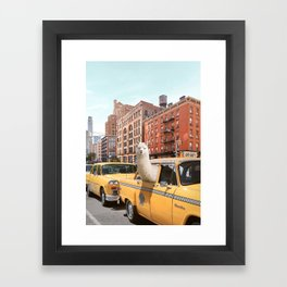 Alpaca in New York Framed Art Print