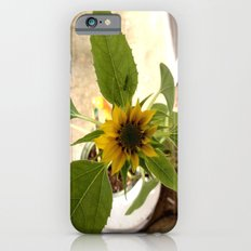 Flower Spider Slim Case iPhone 6s