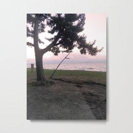 Biwa Lake in Japan Metal Print