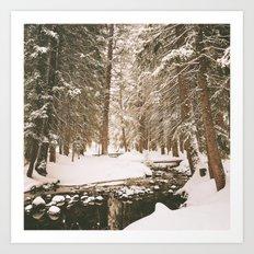 Winter Wonderland in the Forest Art Print